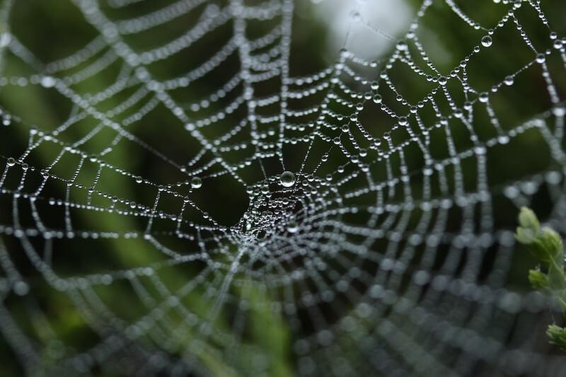 web技術を勉強する